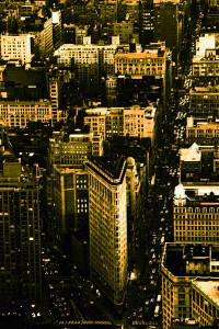 29 -new-york